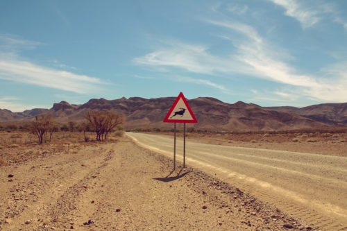 Namibia Roadtrip Reisebericht